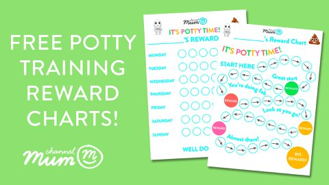 image relating to Free Printable Potty Training Chart named Printable Profit Charts Channel Mum